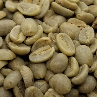 SANYU Premium Arabica Coffee